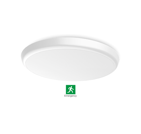 2dceilinglight - LED 2D Ceiling Light 12W (Emergency)
