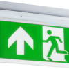 108986 100x100 - 230V 2W Recessed LED Emergency Exit sign
